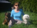 dogsitting_odenwald_0005